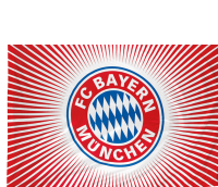FC Bayern Rot/Weiss Flagge / Fahne 100x150cm